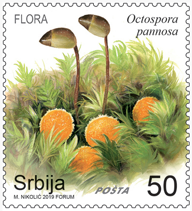 New postage stamp